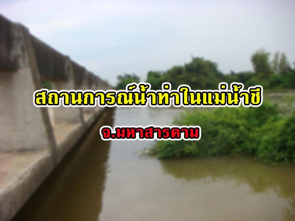 สถานการณ์น้ำท่าในแม่น้ำชี จ.มหาสารคาม