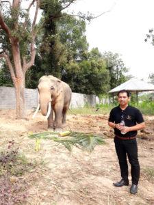 เจ้าของปางช้าง คุณธนบดี พรหมสุข