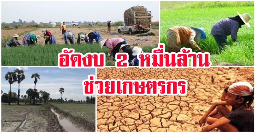 ชงตั้งกองทุนสวัสดิการอุ้มเกษตรกร นายกฯกำชับต้องดูแลยันตาย อัดงบ 2 หมื่นล้าน