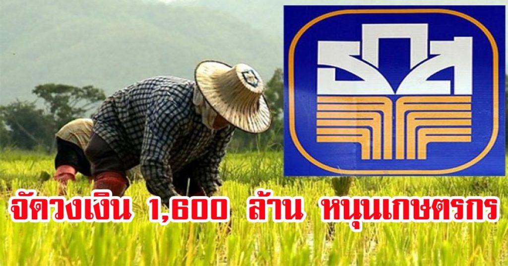 ธ.ก.ส. จัดวงเงิน 1,600 ล้าน หนุนเกษตรกรสร้างยุ้งฉางเก็บข้าวเปลือกไว้รอราคา