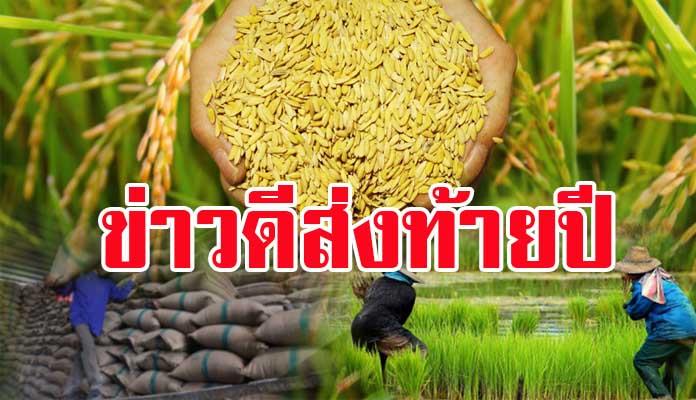 ข่าวดีส่งท้ายปี ทั้งจีนและฟิลิปปินส์สั่งซื้อข้าวไทย รวม 324,000 ตัน